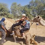 Tips for Writers: What to do When Your Camel Does THIS